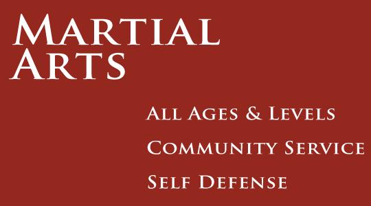 2014 martial art